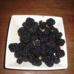 Blackberries for tarts