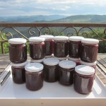 plum jam batch