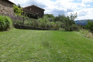 The pool garden – the soothing expanse of lawn