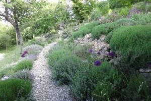 The barn garden – gardening on a slope