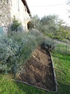 file lavender new area