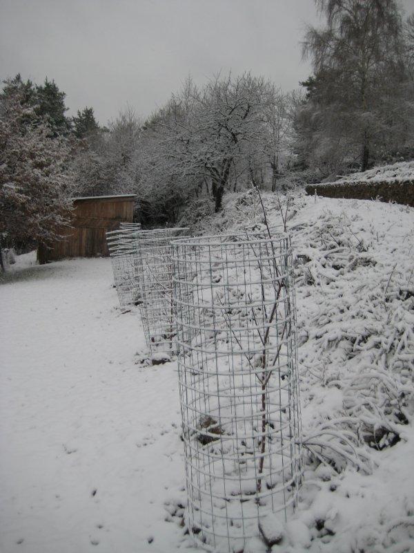 11 Orchard Dec 08