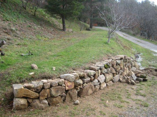 3 New wall near fig
