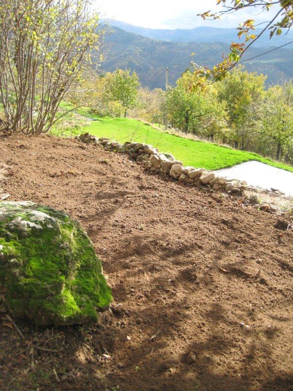 04 Shade garden cleared