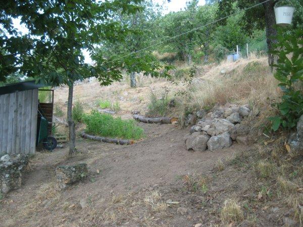 07 new shade garden under line