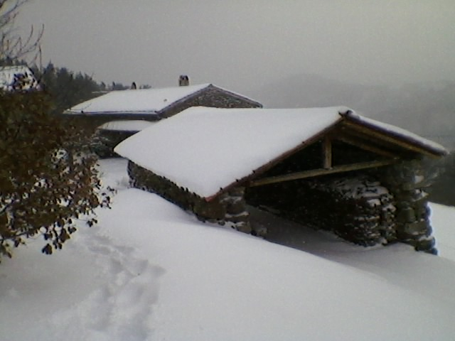 11 calabert under snow