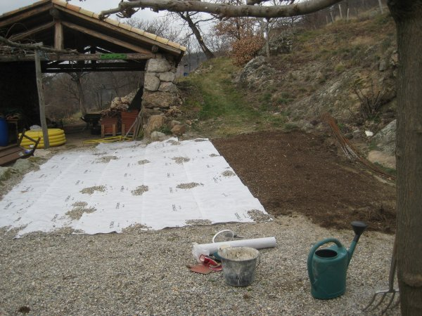 preparng courtyard