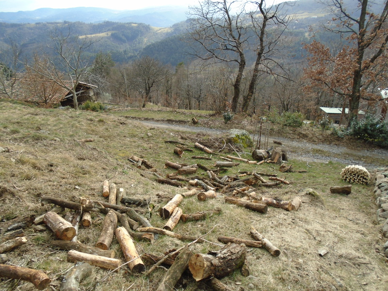 woodtossing