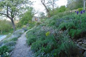 The barn garden and shade garden in spring
