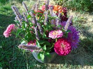 bucket o blooms