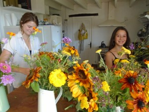 sunflowerarranging