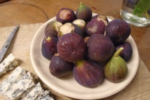Harvesting figs
