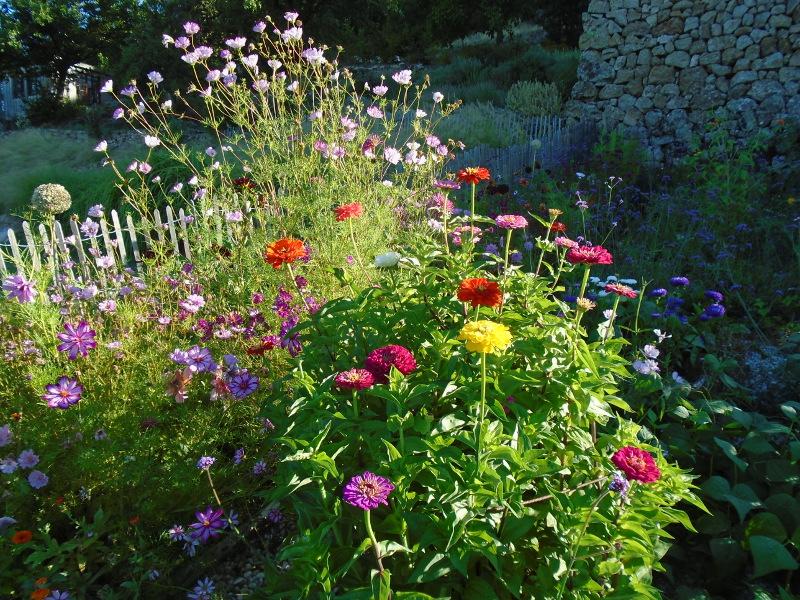 flowers sept