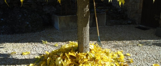 Leaf work