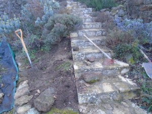 steps part one