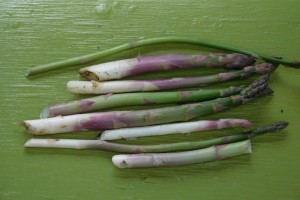Carnage in the asparagus bed