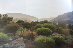 Creating a gravel garden – list stage