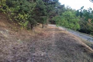 Creating a new gravel garden – breaking ground
