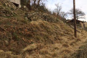 Grass cutting season sorted