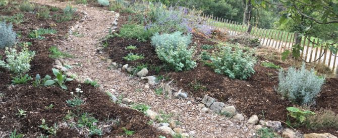 The dry garden anniversary