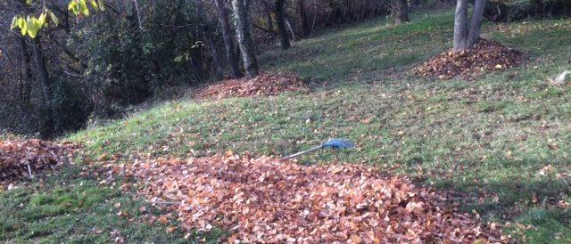 The leaf blower free farm