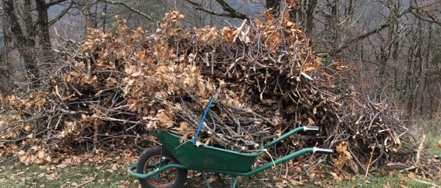Chipping branches for mulch