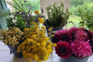 Potager flowers