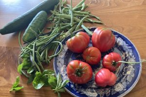 Permaculture productivity