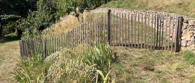 Chestnut fencing in an orchard